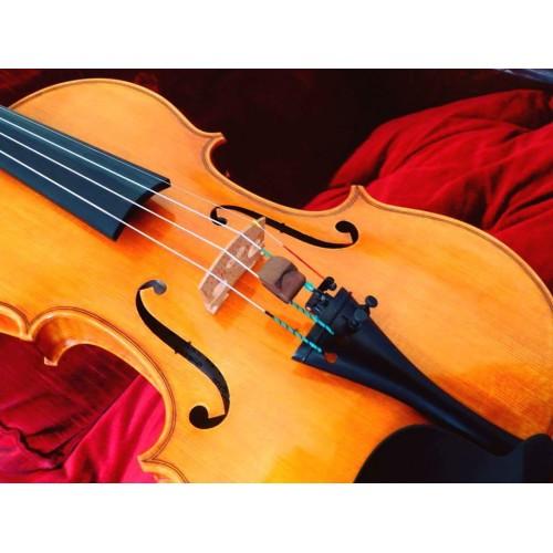 Veliko Nedyalkov-luthier violin viola y violonchelo